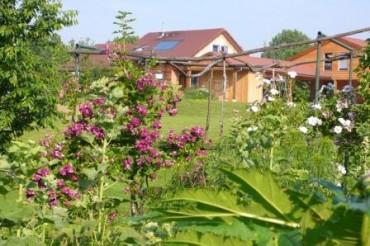 vue du jardin depuis le batiment